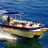 Seal Island Boat Trips - Simons Town